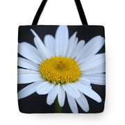 Winter Daisy Tote Bag