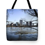 Winter Day At Belle Isle Tote Bag