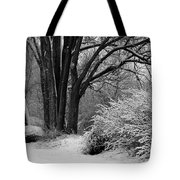 Winter Day - Black And White Tote Bag