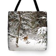 Winter Doe In The Upper Peninsula Tote Bag