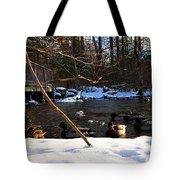 Winter Ducks Tote Bag