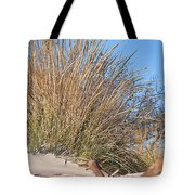 Winter Dunes Tote Bag