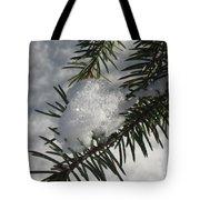 Winter Evergreen Tote Bag