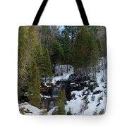 Winter Fall Tote Bag