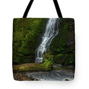 Winter Falls Tote Bag