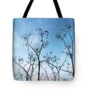 Winter Fennel Two Tote Bag