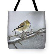 Winter Finch 2010 Tote Bag