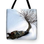 Winter Finery Tote Bag
