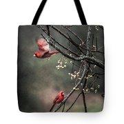 Winter Flight  Tote Bag by Kim Loftis