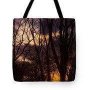 Winter Forest Sunrise Tote Bag