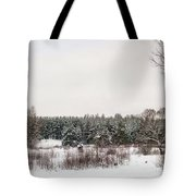 Winter Glade Under Snow. Tote Bag