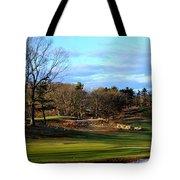 Winter Golf Tote Bag