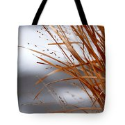 Winter Grass - 2 Tote Bag