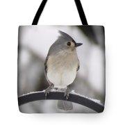 Winter Gray - Bird Tote Bag