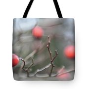 Winter Hawthorn Tote Bag