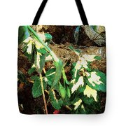 Winter Hideout Tote Bag