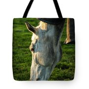 Winter Horse 3 Tote Bag