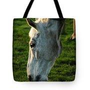 Winter Horse 4 Tote Bag