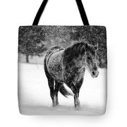 Winter Horse Tote Bag by Mark Courage