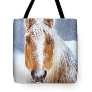 Winter Horse Portrait Tote Bag