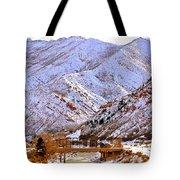 Winter In Grand Junction Tote Bag