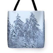 Winter In Maine 2017 Tote Bag