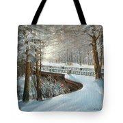 Winter In Pavlovsk Park Tote Bag