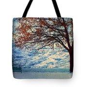Winter In Peachland Tote Bag