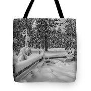 Winter In The Sierra Tote Bag