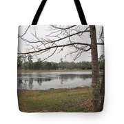 Winter In The Spring Tote Bag