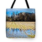 Winter In Washington Fields Tote Bag