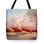 Winter Landscape Dry Creek Bed Tote Bag