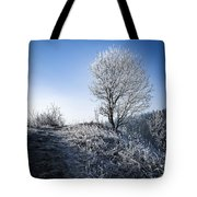 Winter Landscape Of Trees Covered With Frost Tote Bag