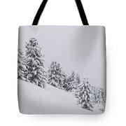 Winter Landscapes Tote Bag