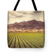 Winter Lettuce Tote Bag