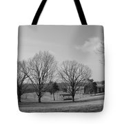 Winter Looking At The Dell Tote Bag
