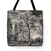 Winter Marches On Polaroid Tote Bag