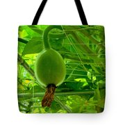 Winter Melon In Garden 3 Tote Bag