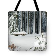 Winter Moments In Harz Mountains Tote Bag