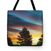 Winter Morning Glory Tote Bag by Jason Coward