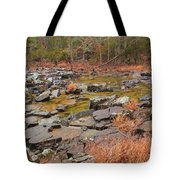 Winter Morning On Marble Creek 1 Tote Bag