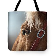 Winter Mustang Eye Tote Bag