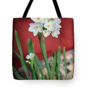 Winter Narcissus II Tote Bag