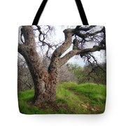 Winter Oak Tote Bag