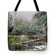 Winter On The Beaver Pond Tote Bag