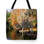 Winter On The Hillsborough Tote Bag