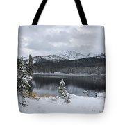 Winter Paradise Tote Bag