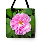 Winter Park Rose Tote Bag
