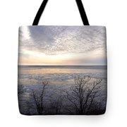 Winter Pastels Tote Bag