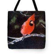 Winter Perch Tote Bag